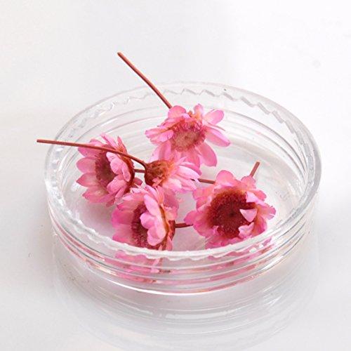 ミニチュアフラワー miniデイジー ドライフラワー 桜 色 ケース付き ネイル レジン 用 押し花 レースフラワー