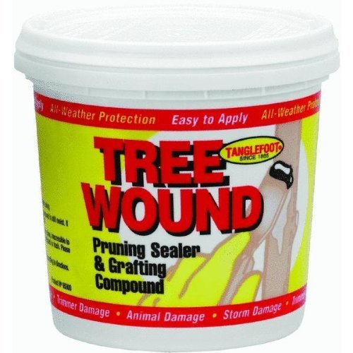 tanglefoot-300000530-1-quart-tree-wound-pruning-sealer-and-grafting-compound-by-contech
