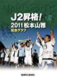 J2昇格! 2011松本山雅記念グラフ
