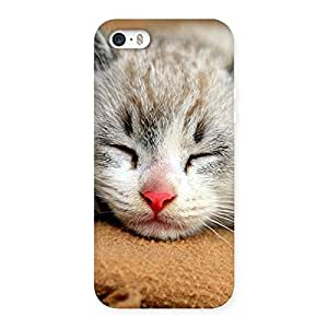 Cute Sleeping Cat Multicolor Back Case Cover for iPhone 5 5S