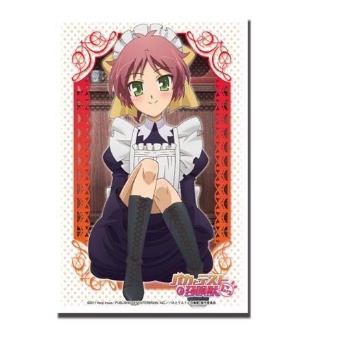 ブシロードスリーブコレクションHG (ハイグレード) Vol.158 バカとテストと召喚獣にっ! 『島田 美波』