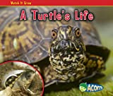A Turtle s Life (Watch It Grow)