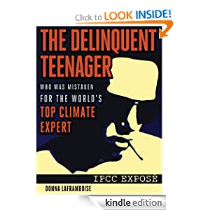 Amazon.com: The Delinquent Teenager Who Was Mistaken for the World's Top Climate Expert eBook: Donna Laframboise: Books