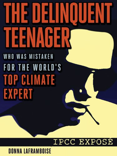The Delinquent Teenager Who Was Mistaken for the World&#039;s Top Climate Expert
