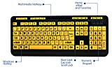 Adesso Luminous 4 X Large Print Multimedia Desktop USB Keyboard (AKB-132UY)