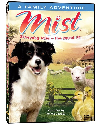 mist-sheepdog-tales-the-round-up