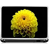 Removable Vinyl Decal Sticker Skin For Laptop / Note Pads Up To 15 Inch Wide. Made From 3M Media DecalDesign :... - B00N6IM8CG