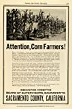 1914 Ad Sacramento County California Corn Farming Agriculture Real Estate Price - Original Print Ad