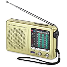 buy Portable Am/Fm/Sw 9 Band Radio