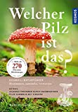 Welcher Pilz ist das?: Extra. Pilze und ihre Baumpartner