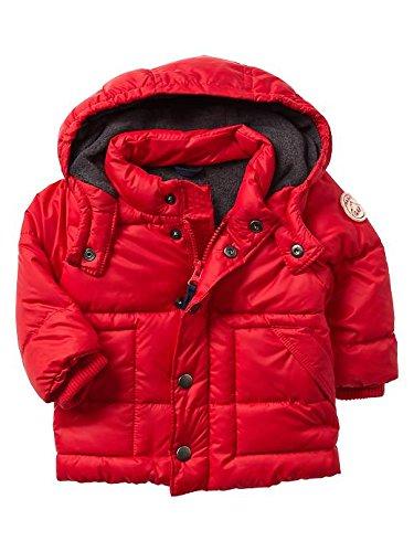Gap Baby Warmest Puffer Size 12-18 M front-1071252