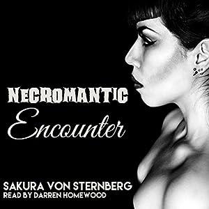 Necromantic Encounter Audiobook