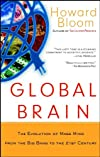 Global Brain: The Evolution of Mass Mind from the Big Bang to the 21st Century