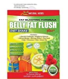 Belly FAT Flush Shake with Garcinia,raspberry Ketones, Green Tea,moringa by Natural Herbs
