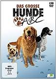 Das große Hunde-ABC [2 DVDs]
