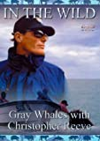 In The Wild - Grey Whales With Christopher Reeve [1998] [DVD]