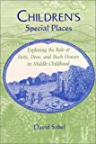 Children's Special Places: Exploring the Role of Forts, Dens, and Bush Houses in Middle Childhood (The Child in the City Series)