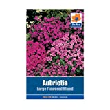 Aubretia Large Flowered Mixed Seeds