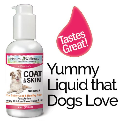 Natural Wellness - Coat & Skin For Dogs - Great Taste & Easy To Administer - 4 Oz