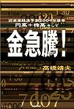 円高+株高そして金急騰!―近未来経済予測2004年後半
