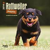 Rottweiler Puppies 2014 Mini Calendar