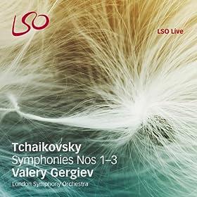 """Symphony No. 3 """"The Polish"""": ii. Alla tedesca: Allegro moderato e semplice"""