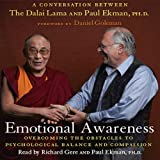 img - for Emotional Awareness: Overcoming the Obstacles to Emotional Balance and Compassion book / textbook / text book