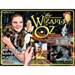 Wizard of Oz Mix 'N' Match Magnetic Adventure Set