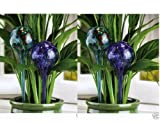 4 lot Aqua BLUE blown Art Glass Globe Ball Vacation Plant water Watering Stake