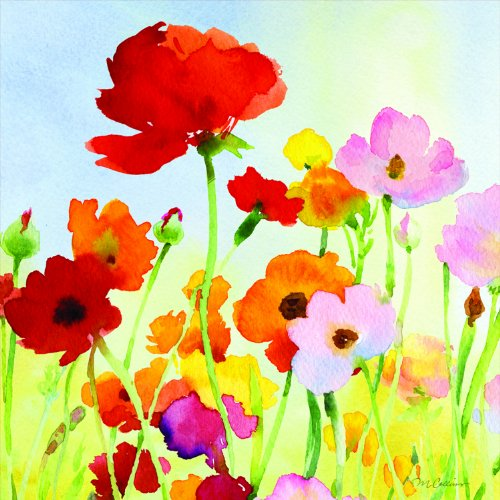 Paperproducts Design 1251174 20-Pack Beverage Cocktail Napkin, 5 By 5-Inch, Antibes Watercolor Poppies