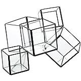 スパイス ガラステラリウム 5 ブロック GFGY5050