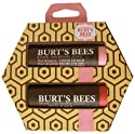 Tinted Lip Balm Duo-Pink Blossom & Rose Burt's Bees 2 pk Lipstick
