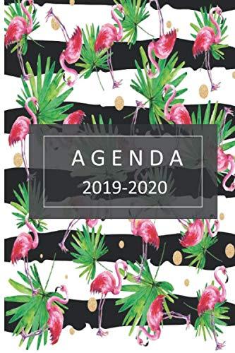 agenda 2019- 2020 agenda 2019-2020 del 1 de julio del 2019 al 31 de diciembre del 2020 ideal para el regreso a clase con 80 hojas planificación semanal  [mujer, agenda] (Tapa Blanda)