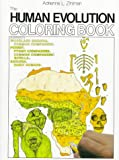 The Human Evolution Coloring Book (College Outline) (0064603040) by Adrienne Zihlman