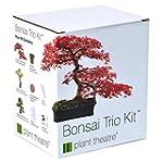 Plant Theatre Bonsai Trio Kit - 3 Dis...