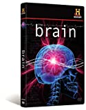 Brain [DVD] [2008] [Region 1] [US Import] [NTSC]