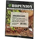 Amarillo Hop Pellets 1 oz.
