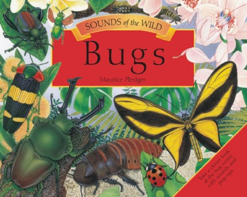 Bugs (Sounds of the Wild)