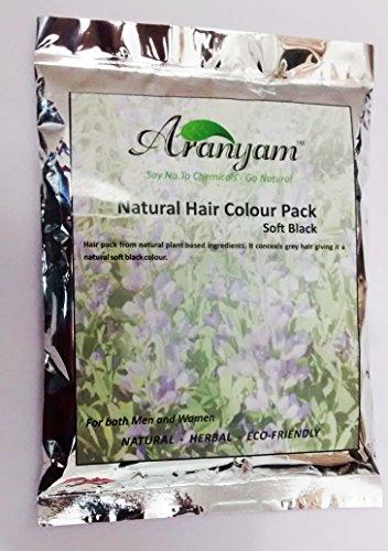 Aranyam Natural Hair Colour Pack Soft Black, 80 Gm