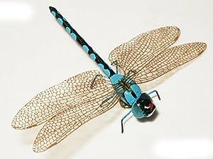 BN - ERRO Magnet Libelle blau - Insektenmagnete, magnetische Tiere
