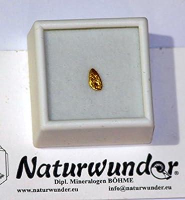 """Natürliches Gold - Nugget, ca. 0.25-0,21 Gramm schwer """"Viertel-Gramm), ca. 9,5-8 mm groß + ! in Glasdeckel-Dose mit weißer Samteinlage, Oregon"""