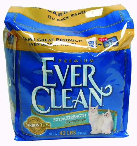 Everclean Cat Litter