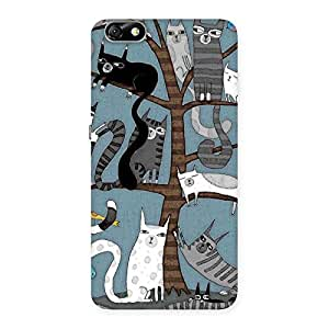 Delighted Cat On Trees Print Back Case Cover for Honor 4X