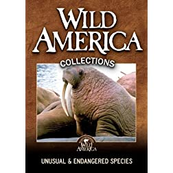 Unusual &amp; Endangered Species Collection