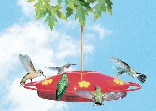 HUMMINGBIRD OASIS FEEDER, Color: RED (Catalog Category: Wild Bird:HUMMINGBIRD, ORIOLES, Butterfly ) (Oasis Hummingbird Feeder compare prices)