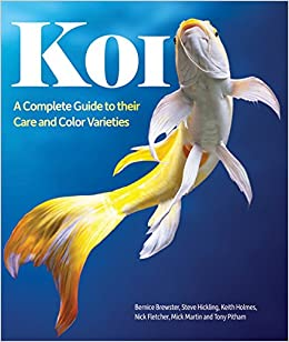 Koi a complete guide to their care and color varieties for Japanese koi names