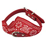 AQY Faux leather collar with sling/Triangular Scarf for medium and small dogs (RED)