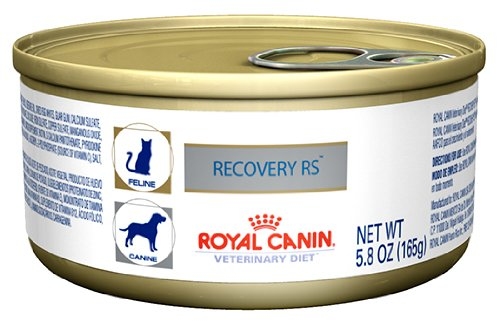 Royal Canin Babydog Milk 2kg - Animed Direct