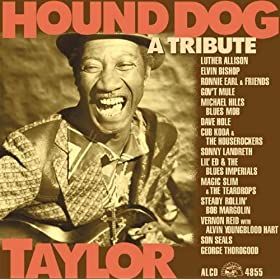 Hound Dog Taylor: A Tribute