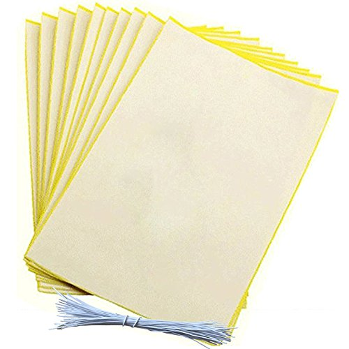 glue-boards-peyour-20-pcs-984x787-yellow-double-sided-sticky-trap-glue-board-for-aphid-insects-white